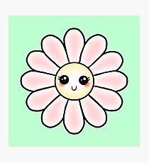 Kawaii Daisy | Pink Blossom Flower Photographic Print