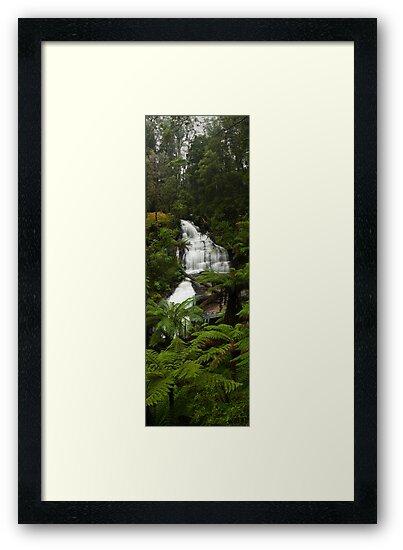 Triplet falls - Otway ranges by Tony Middleton
