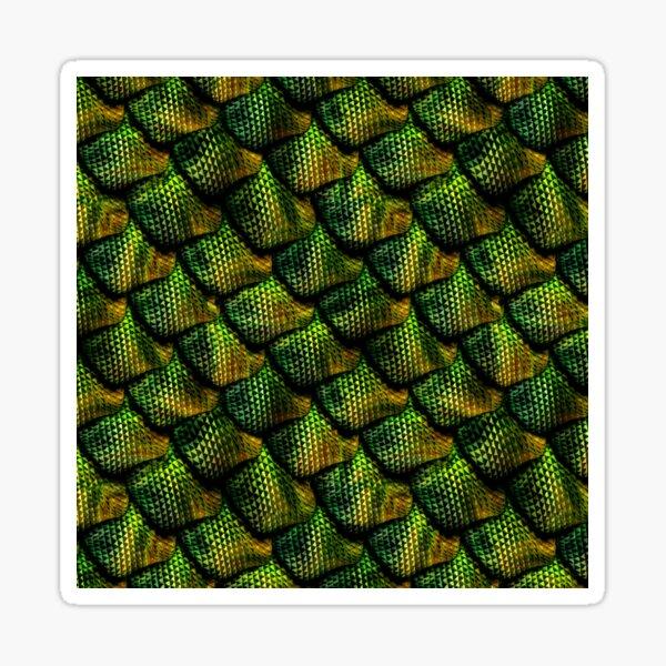 Dragon Scales 1 Sticker