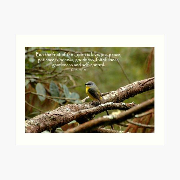 Galations 5:22 Art Print