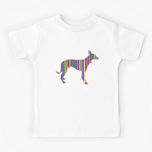 Childrens Short-Sleeved T-Shirts Rainbow Jet Running Dog for Boys and Girls