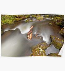 Hidden Falls Creek V Poster