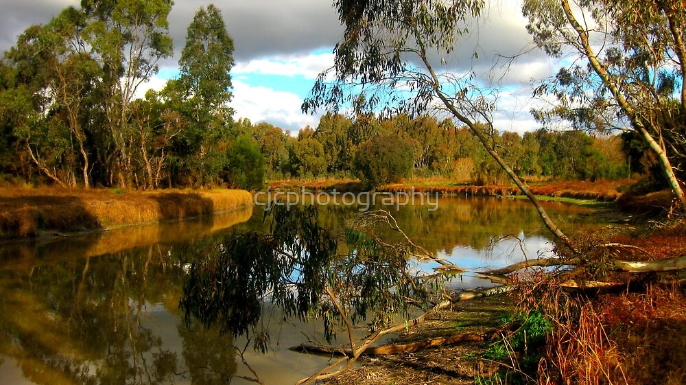 River Heritage & Wetlands Reserve by cjcphotography