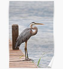 STANDING ON THE DOCK OF BAY Poster
