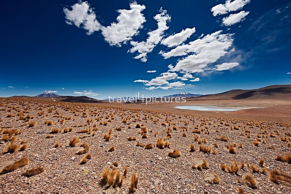 Reserva Nacional Fauna Andina Eduardo Abaroa Bolivia