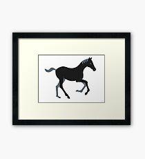 Black Pony Framed Print