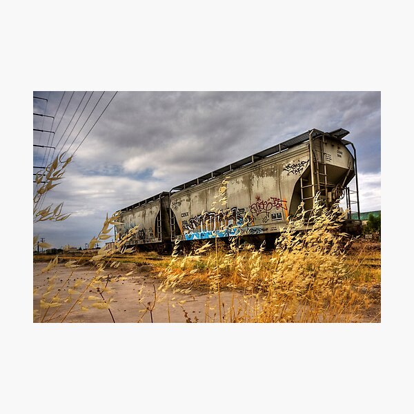 Whispers of the Rail Photographic Print