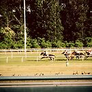 The Race by Ashley Frechette