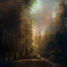 Chosen Path by John Rivera