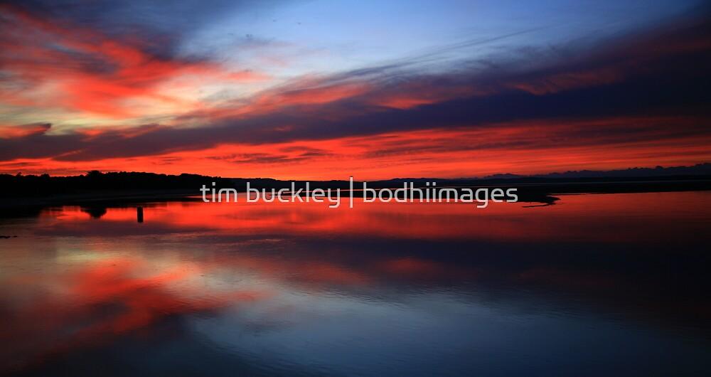 stillness. anderson inlet. victoria by tim buckley | bodhiimages