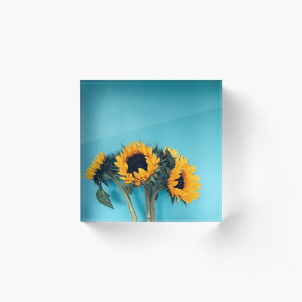 Sunflowers Acrylic Block