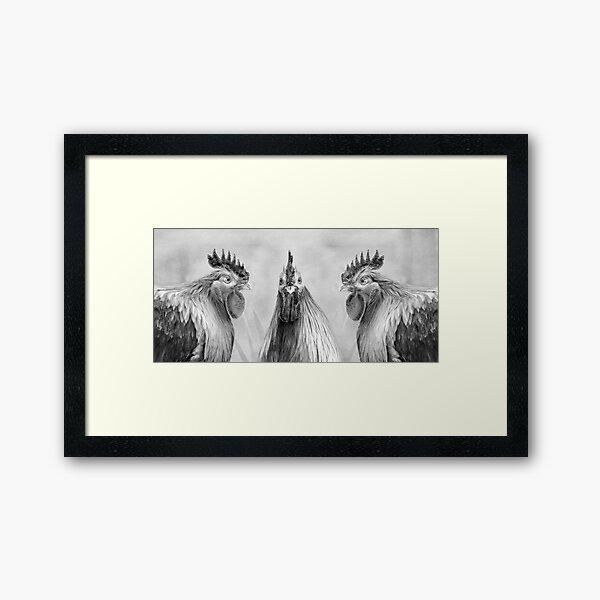 Hen Party, Gulp! Black And White  Framed Art Print
