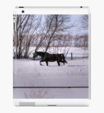 If you're not from the Prairie... iPad Case/Skin