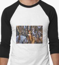 Curiosity!!! Men's Baseball ¾ T-Shirt