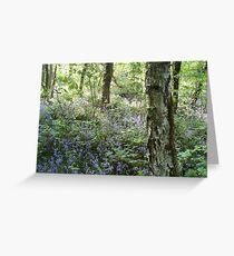 Tyle-Y-Coch Bluebells. Greeting Card