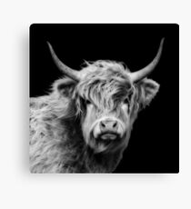 Highland Cow In Black And White Canvas Print