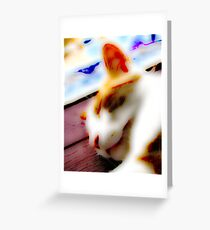 Jasper In Repose Greeting Card