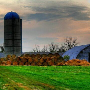 Down on the Farm by umpa1