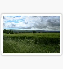 Green Field and Grey Sky - HDR Sticker