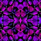 Violets by WildUnit