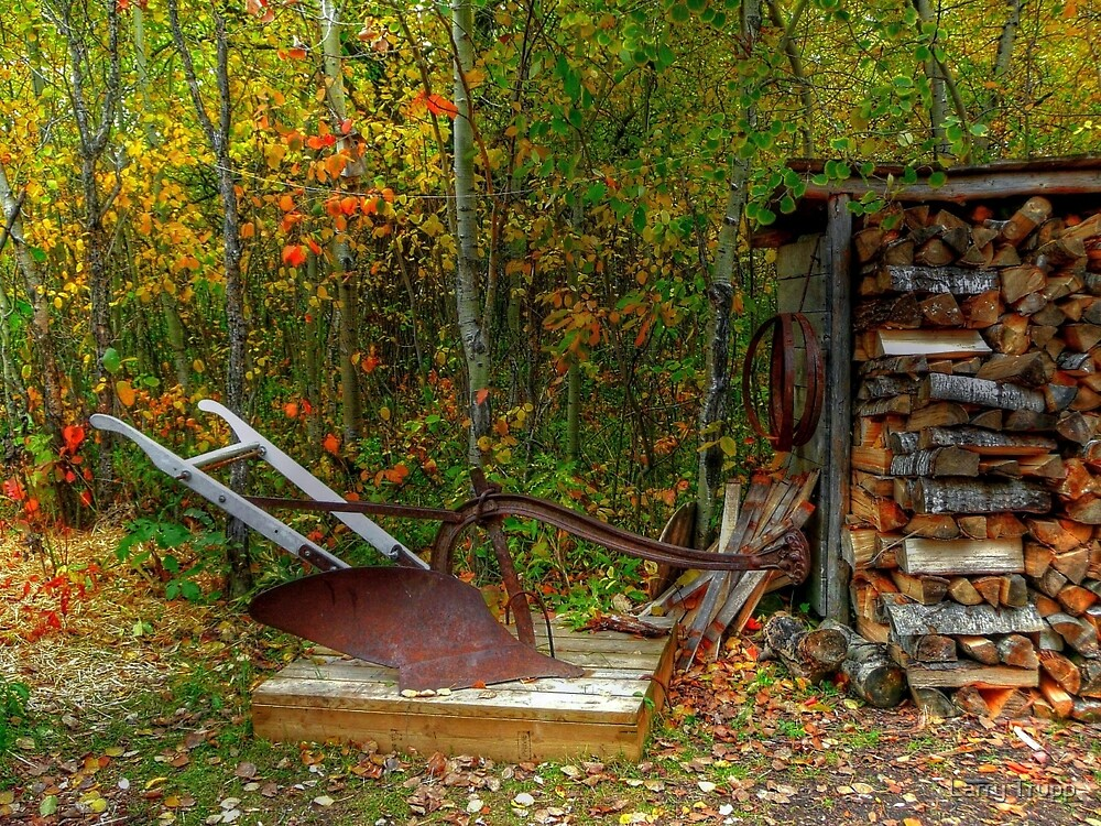 Old Plough by Larry Trupp