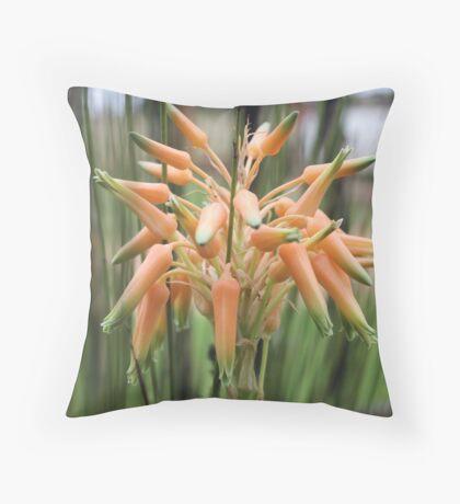 Aloe cooperi - flower Throw Pillow