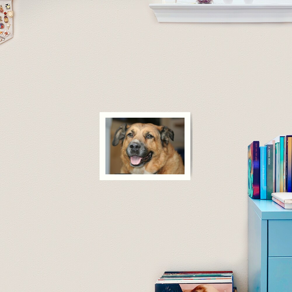 My dog Charlie 2 Art Print