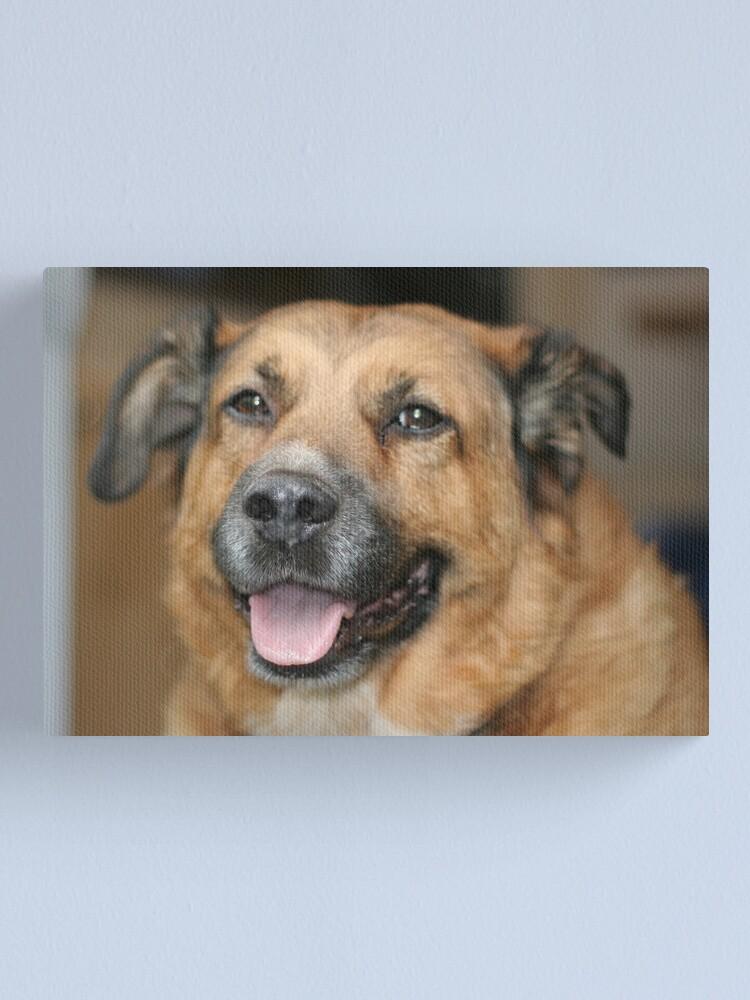 Alternate view of My dog Charlie 2 Canvas Print