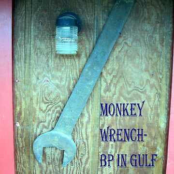 BP's Monkey Wrench Award by fnature