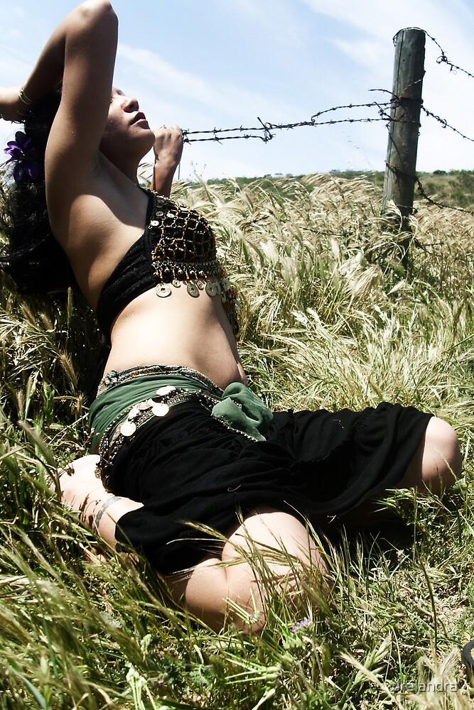 Belly Dancer, Barbed Wire, Joanna Plant  by prelandra