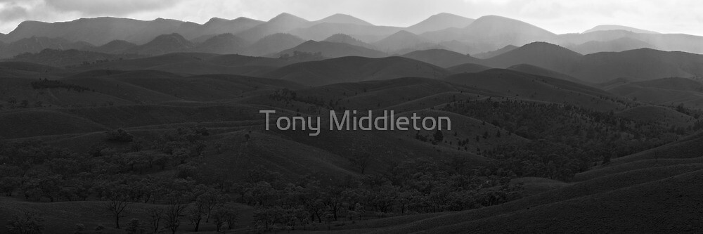 mountain layers by Tony Middleton