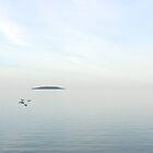 lake huron I by evStyle