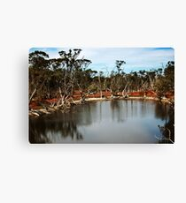 Gorden River Canvas Print