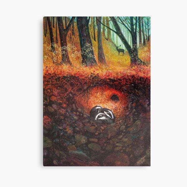 Three Badgers  Canvas Print
