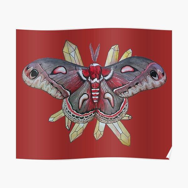 Cecropia Moth and Citrine Crystals, Watercolor Hyalophora cecropia  Poster