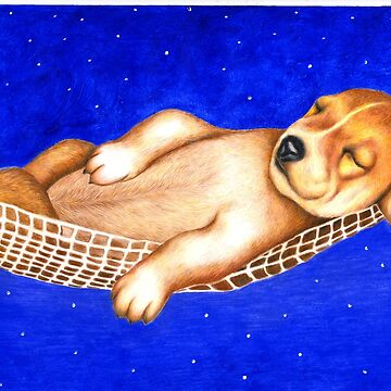 Sleeping under the stars 763 views by mags0412