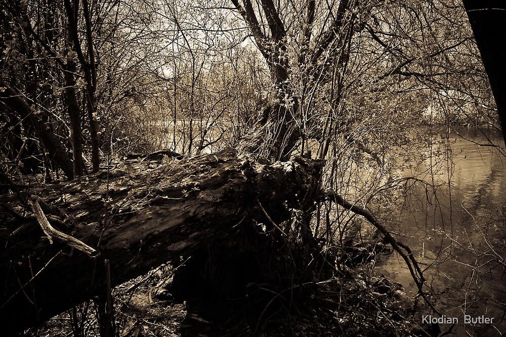 Dead End  by Klodian  Butler