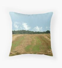 Bad Hay Day :-)) Throw Pillow