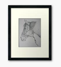 Cajun Framed Print