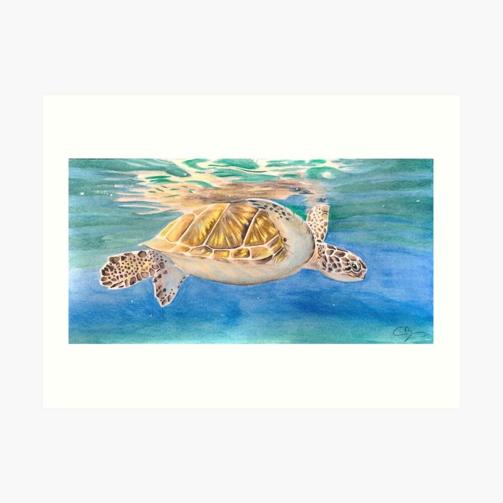 Impression artistique «Tortue marine»