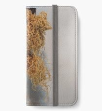 Acclimation iPhone Wallet/Case/Skin