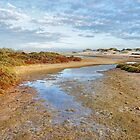 Küstendämmerung von Harry Oldmeadow