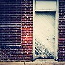 The Door by Jonicool