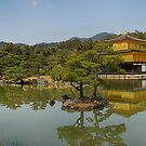 Golden Pavilion panorama by andreisky