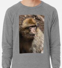 Wild Boy Lightweight Sweatshirt