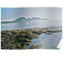 Lofots .My love Norway . Sea landscape. by Brown Sugar  . Views (329) favorited by (1) thanks friends ! Poster