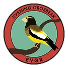 Evening Grosbeak by JadaFitch