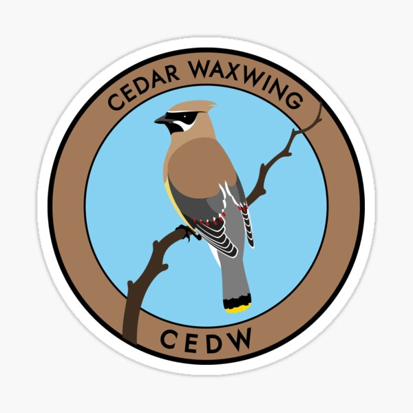 Cedar Waxwing Sticker