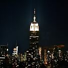 Miadens of NYC Temple by David  Perea