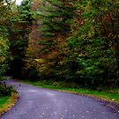 Around The Bend by AlGrover